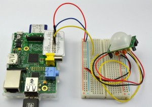 breadboard and pi - web