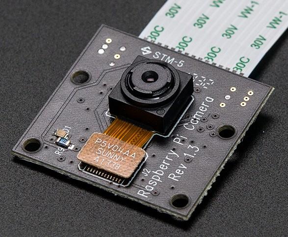 Module caméra PiNoir sensible à l'infrarouge