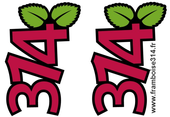 logo_framboise314_03