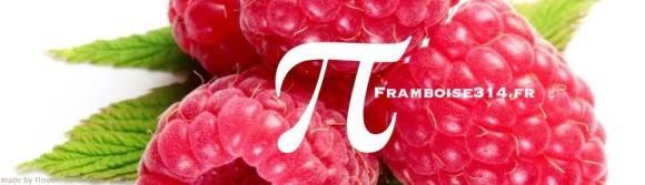 logo_framboise314_07