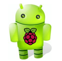 raspberry_control_250