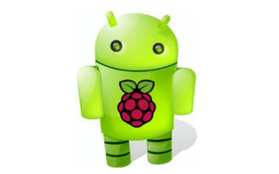 raspberry_control_400