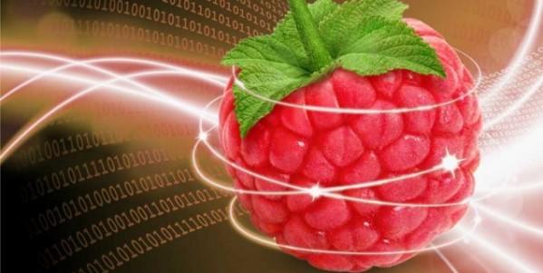 serveur_web_raspberry