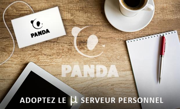 panda_09