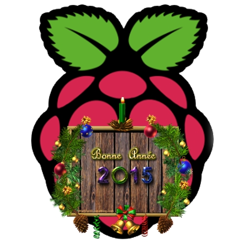 2015_raspberry