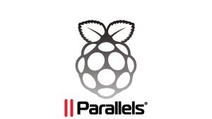 pi_white-parallels-300x168