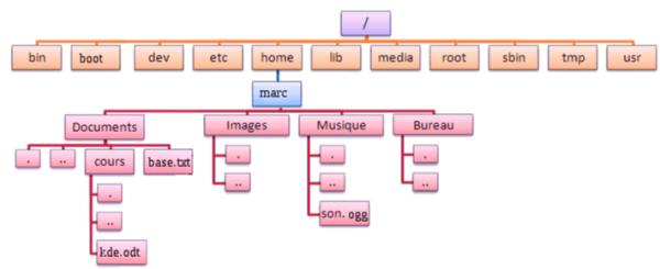 arboresence_Linux