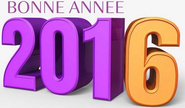 bonne_année_2016_2_600px