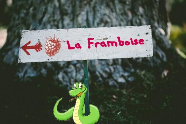 panneau_framboise_python