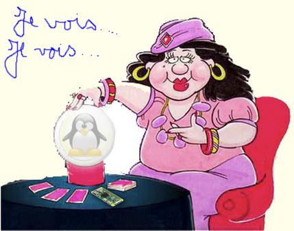 Une voyahnte tenant une boule de cristal contenant un Pinguoin TUX. Elle dit : Je vois... Je vois...