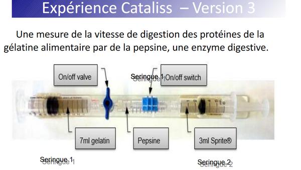 Vue de l'expérience qui sera réalisée à bord de l'ISS : digestion des protéines de la gélatine par la pepsine, une enzyme digestive.