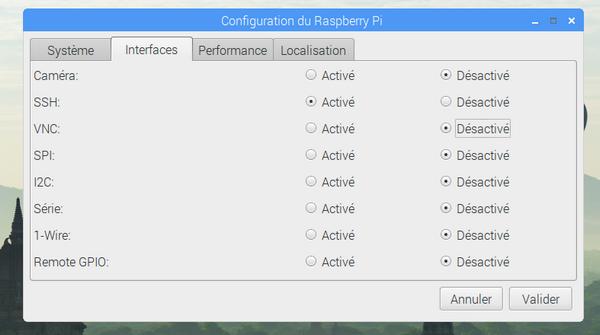 Fenêtre de configuration du Raspberry Pi montrant SSH activé