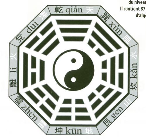 Figure octogonale avec un symbole yin-yang au centre et des symboles interprétés comme du binaire sur les 8 côtés