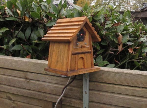 Gros plan sur la maison d'oiseau avec le Raspberry Pi