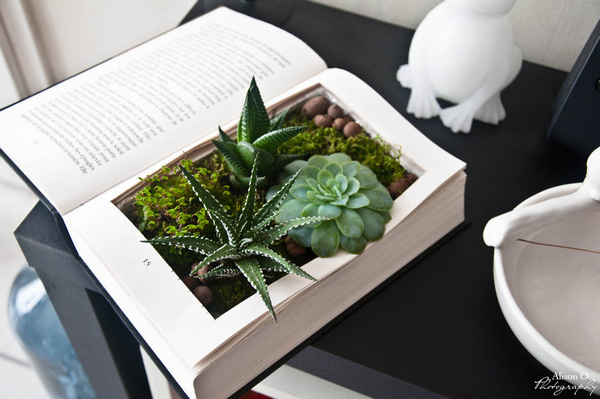 Source https://ouiaremakers.com/posts/tutoriel-diy-le-livre-vegetal